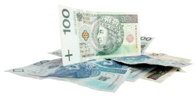 Provident pożyczki w Holandii