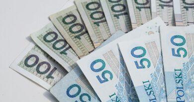 Pożyczki prywatne bez sprawdzania baz online