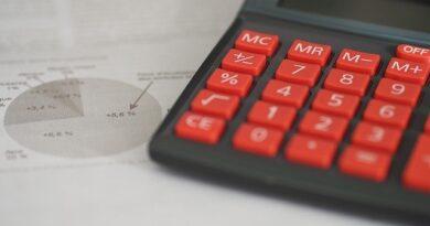 Provident kalkulator