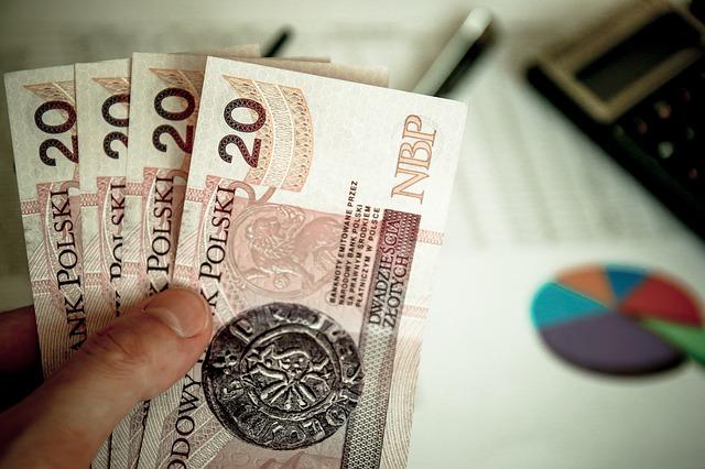 Bocian pożyczki na dowód